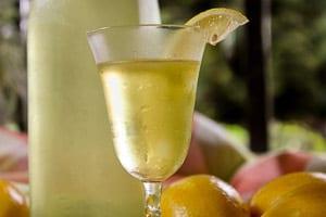 LemoncelloTS-1-of-1