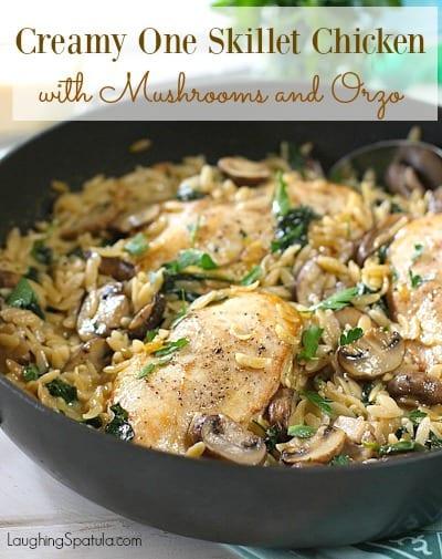 Chicken, Mushroom Orzo5a