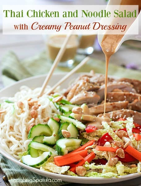 Thai Chicken and Noodle Salad with Peanut Dressing