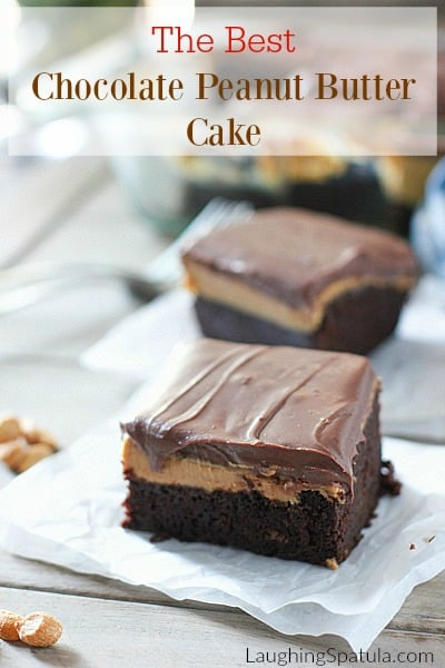 Chocolate PB Cake5a