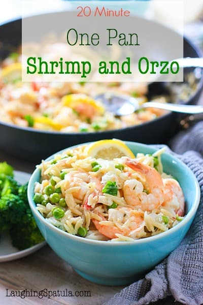 shrimp-and-orzo5