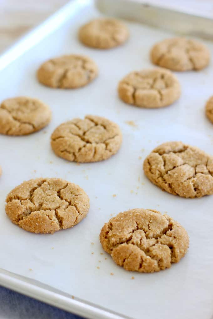 baked peanut butter cookies on a cookies sheet