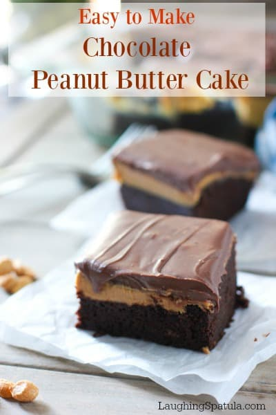 If you are a chocolate and/or peanut butter lover this is The Best Chocolate Peanut Butter cake ever! Using peanut butter right from the jar! #peanutbutter #chocolatecake