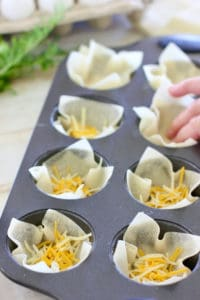 wonton wrappers into a muffin tin