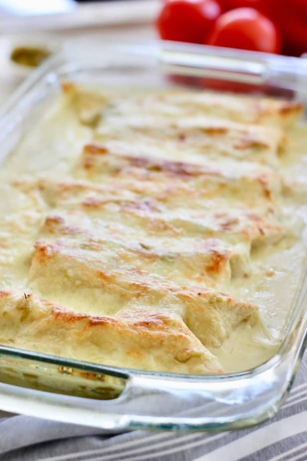 white chicken enchiladas right out of the oven and ready to serve