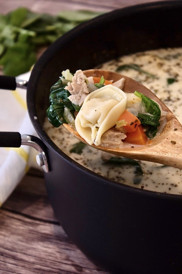 spoonful of chicken tortellini soup